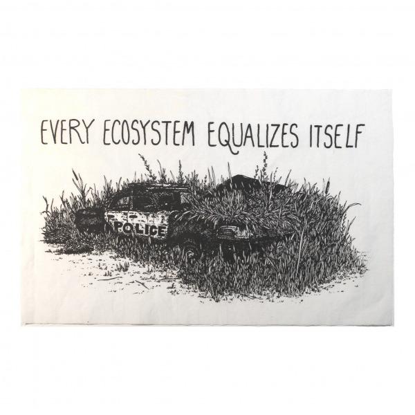 Ecosystem patch