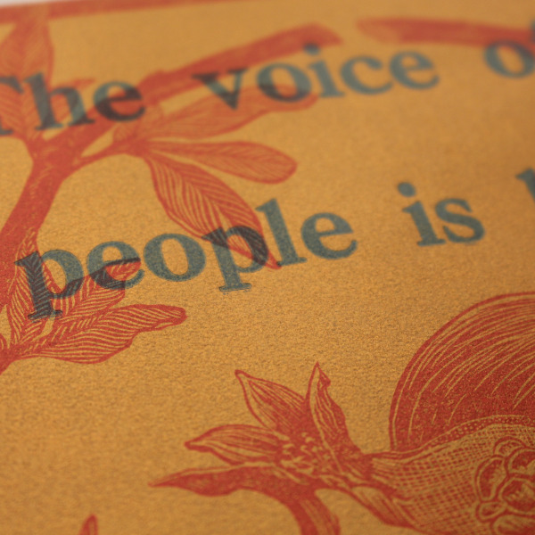 Voice of the People print